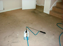 Before carpet cleaning at a property in Bury St Edmunds